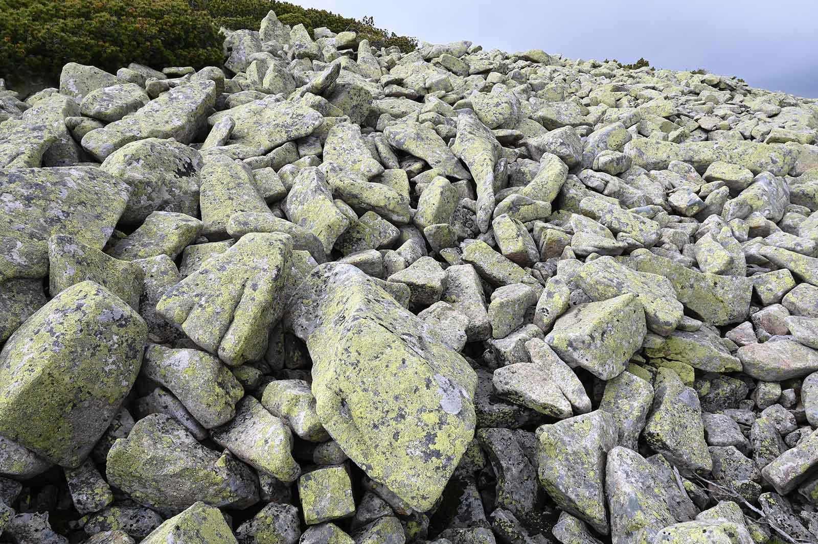 Kamenné moře